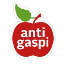logo-anti-gaspi